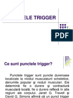 Trigger Point(2)