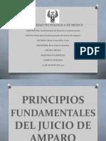 Julio Cesar Rayas Luna. Principios Fund Amen Tales Del Juicio de Amparo