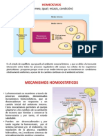 1°sem-homeostasis