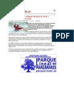 Aranjuez solicita ser subsede olímpica de remo y piragüismo en Madrid 2016
