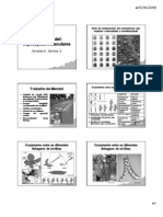 Leis de Mendel - Explicacoes Moleculares [Pequeno]