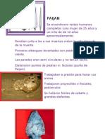 Cultura Paijan