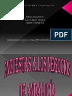 Encuestas de Negocios Andalucia