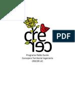 Programa Consejero Territorial Crecer Ingeniería final (1)