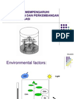 Factors Morphogenesis