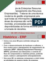 GEI ERP Transparencias