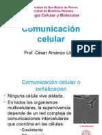 Comunicacion Celular Amanzo