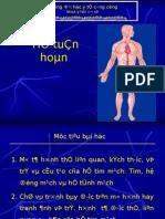 4 He Tuan Hoan_Final