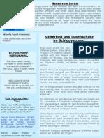 Schiggy Paper Ausgabe 2 / 2011 - Magazin vom Schiggysboard (November)