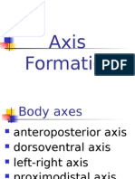 11 Axis Formation