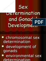 15 Sex Determination