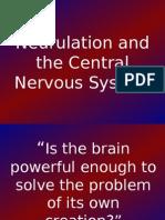 12_Neurulation