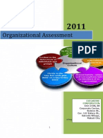 ExeQserve Organizational Assessment Project