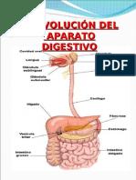 a Digestivo