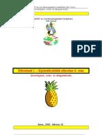 Gyümölcsfélék eltevése - Egyéb gyümölcsők