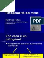Pathogenic It A Dei Virus
