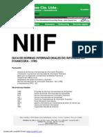 Guia Con Resumen de Las NIIF