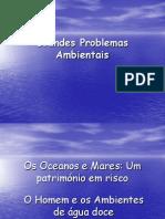 Grandes Problemas Ambient a Is Meri Incia e Ana 1212575716365398 8