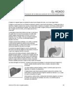 Evaluación de la evolución de la enfermedad hepática
