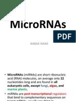 MicroRNA-Babak Nami