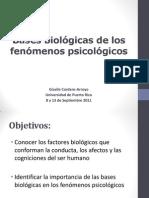 Bases biológicas de los fenómenos psicológicos