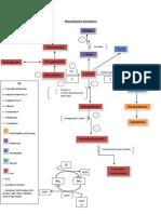Phenylalanine Derivatives