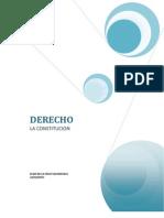 DERECHO DIOR (1)