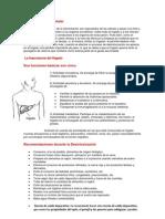 Desintoxicación Celular