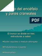 Tronco y Pares4