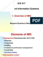 1 Overview of MIS -317