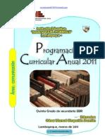 PROGRAMACIÓN ANUAL 2011 - QUINTO