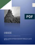 Instalacion OBIEE 10.1.3.4.1 2010