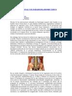 Terapia Manual y Biomecanica