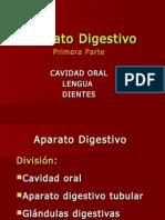 Aparato Digestivo1-ODO