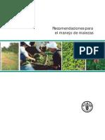 Manejo Malezas - FAO