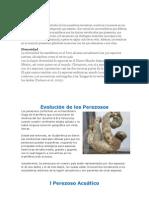 La Mastozoología es el estudio de los mamíferos terrestres