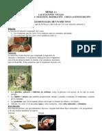 Apuntes_nutricion_heterotrofa
