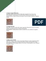 ejercicios_rostro