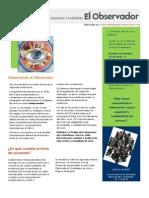 02 Boletín -El Observador- Enero 2011