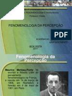 Apresentação Fenomenologia da percepção