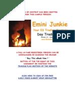 Emini Junkie Day Trading Plan
