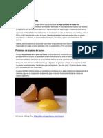 El huevo y las proteínas