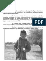 Monografia de La Boa Constrictor Occidental Is
