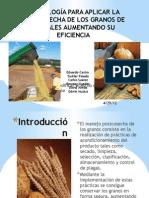 Diapositivas de cereales