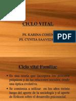 CICLO VITAL. Clase 19 Agosto (1)