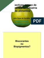 Biopigmenttos-Julio C Carvalho
