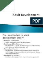Adult Development Theory