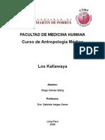 Los Kallawaya
