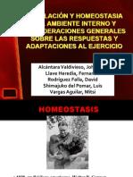 8homeostasis-1222077117900073-8