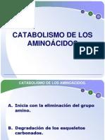 catabolismo_de_los_aminoacidos[1]